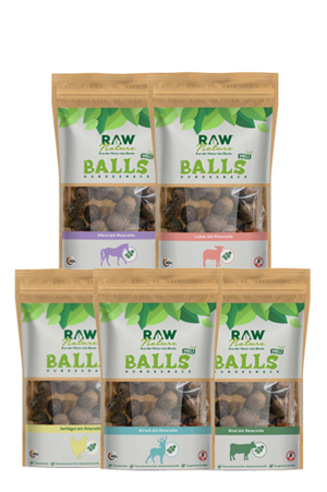 Raw-Nature_Balls_Snacks
